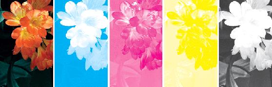 Деление полноцветной картинки на составные цвета